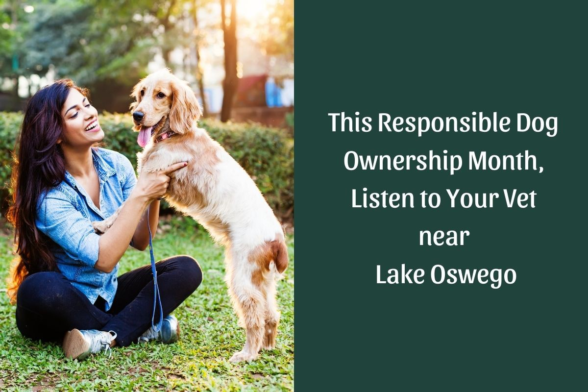 This-Responsible-Dog-Ownership-Month-Listen-to-Your-Vet-near-Lake-Oswego